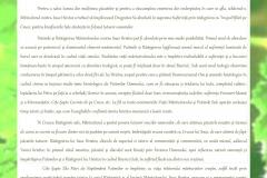 revista 3 primavara 2017_Page_19